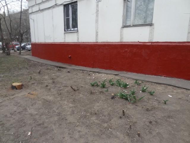 Собянин_второй_срок_17