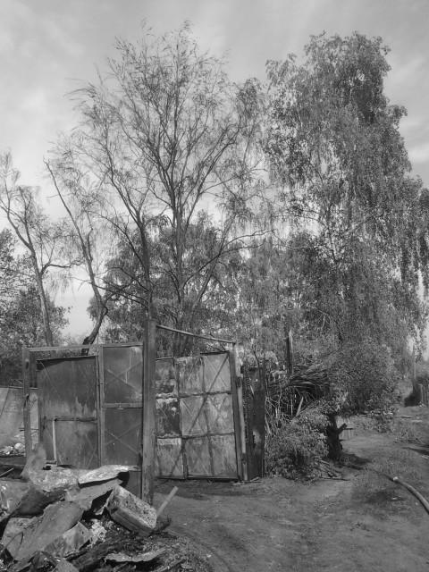 Пожар в Терехово_9