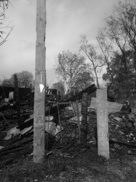 Пожар в Терехово_12