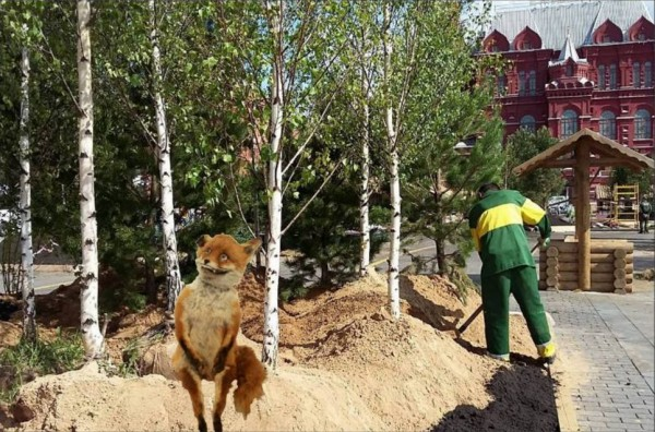 Упоротый лес 5.jpg