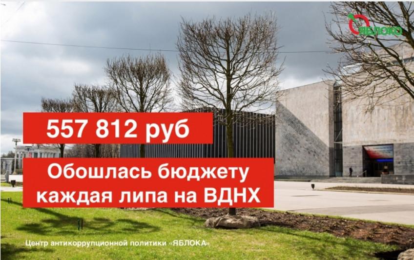 Андрей Коровянский 19.jpg