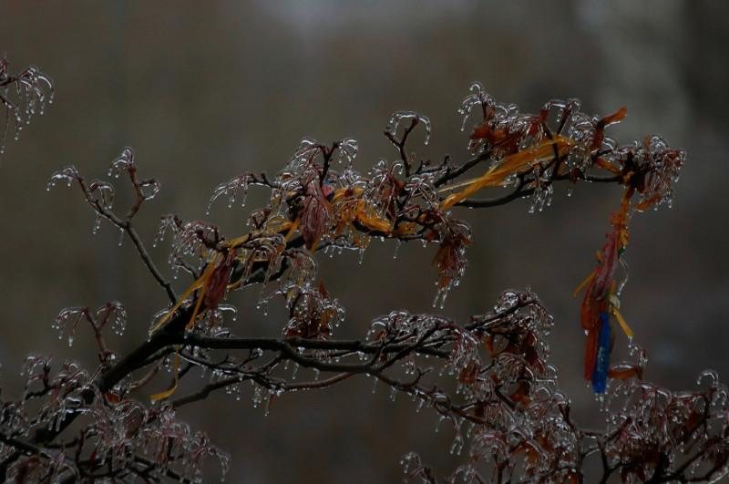 Ледяной дождь Андрей Рушайло Арно 1.jpg