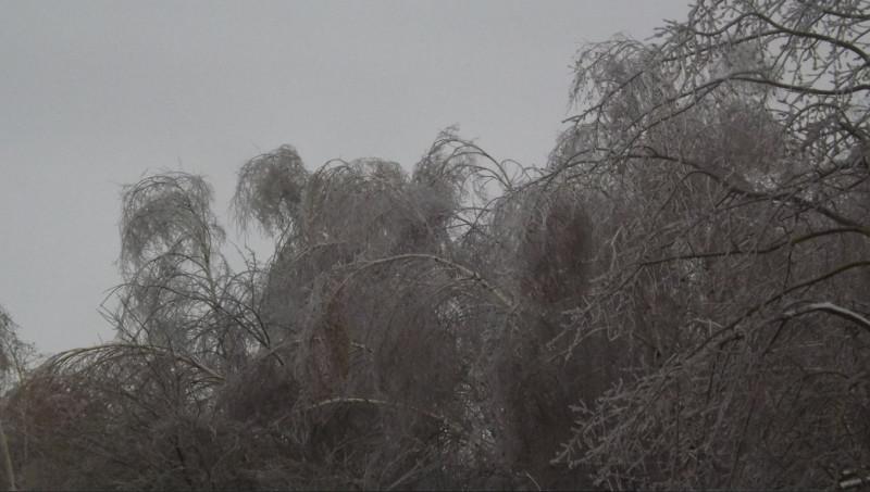 Ледяной дождь Владимир Иванов 1.jpg