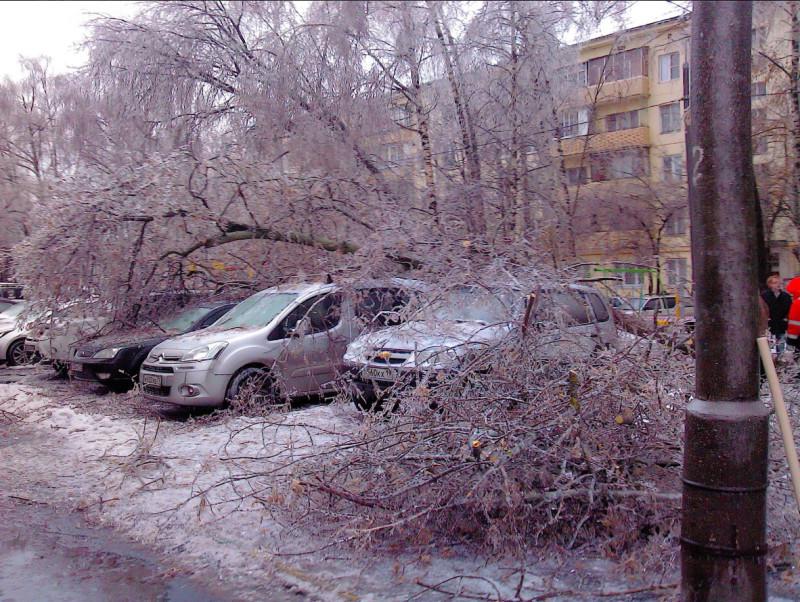 Ледяной дождь Михаил Гусев 1.jpg