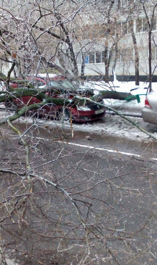 Ледяной дождь Михаил Гусев 3.jpg