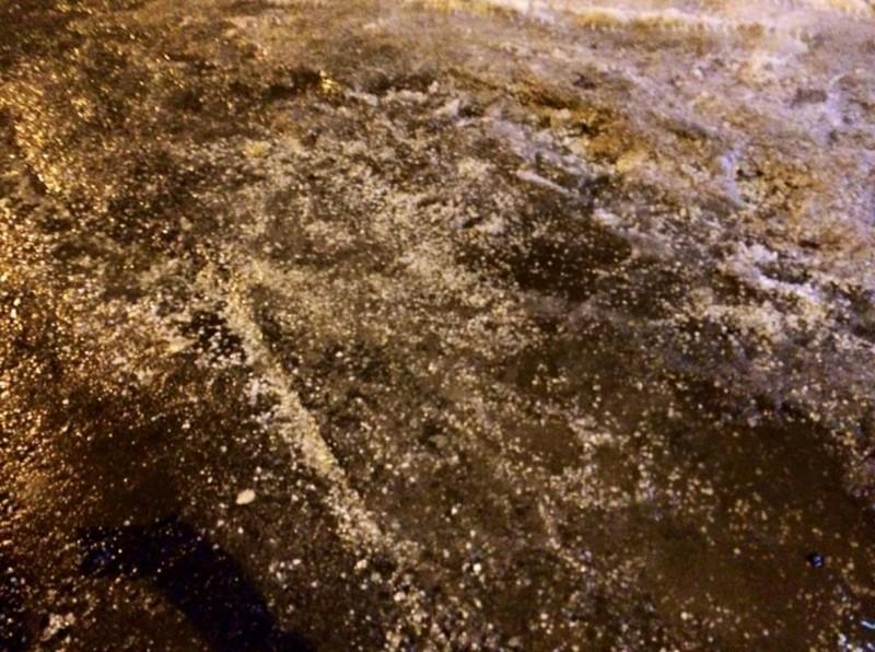 Ледяной дождь Светлана Гришина 2.jpg