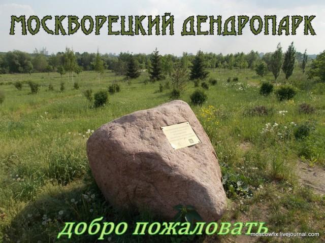 Мневниковская пойма_1