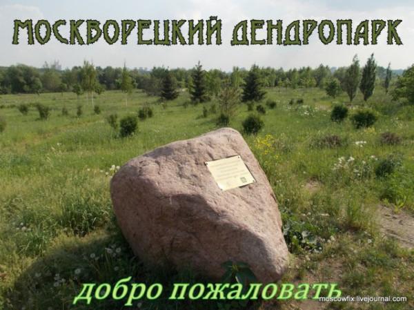 Падающий рубль и парламентский центр_8