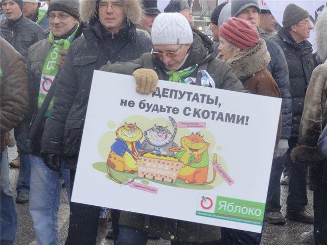Митинг За права москвичей 2 марта 2013_32