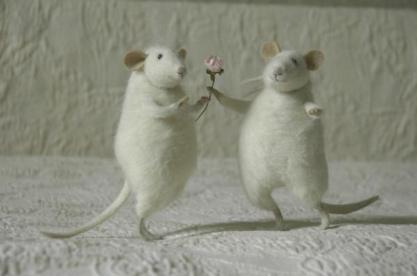 mice_white1