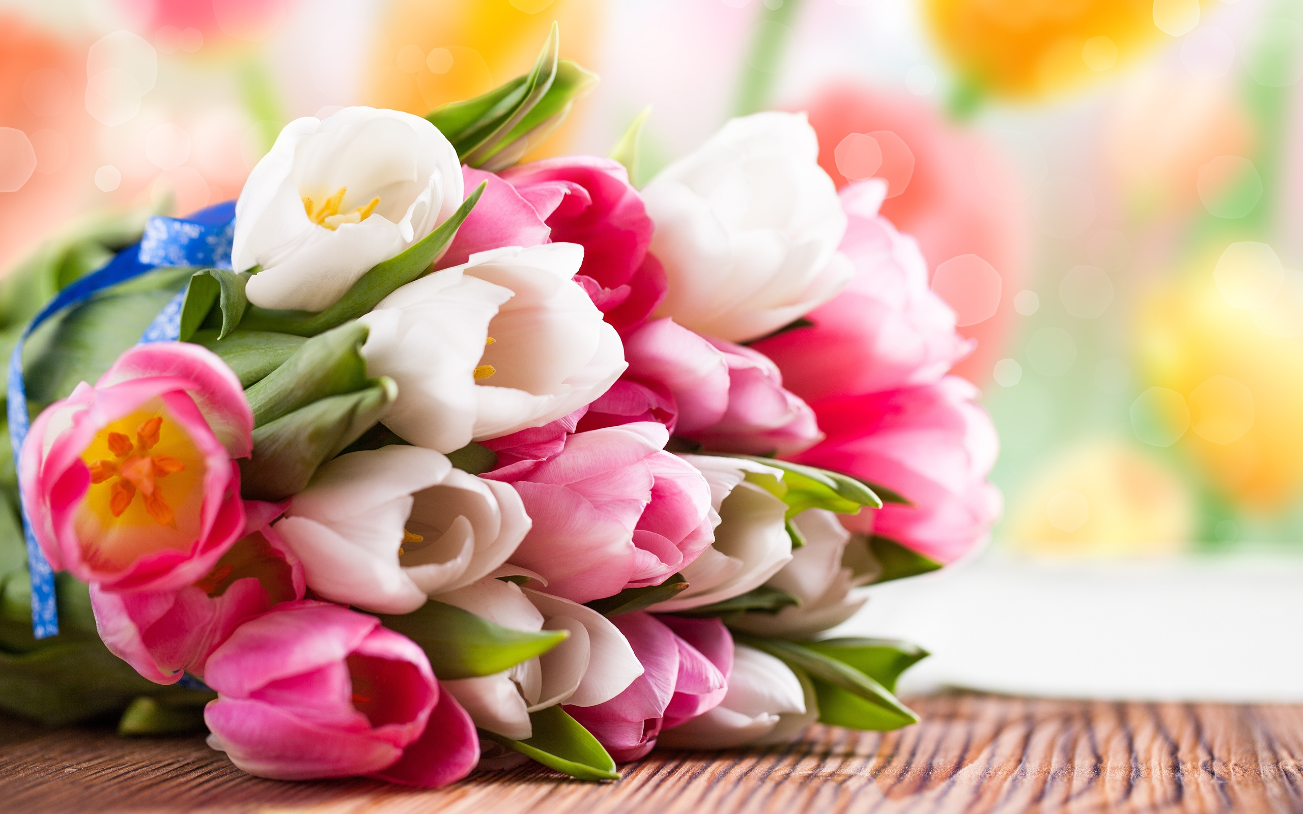 Pink-and-white-tulip-flower-bouquet_2560x1600