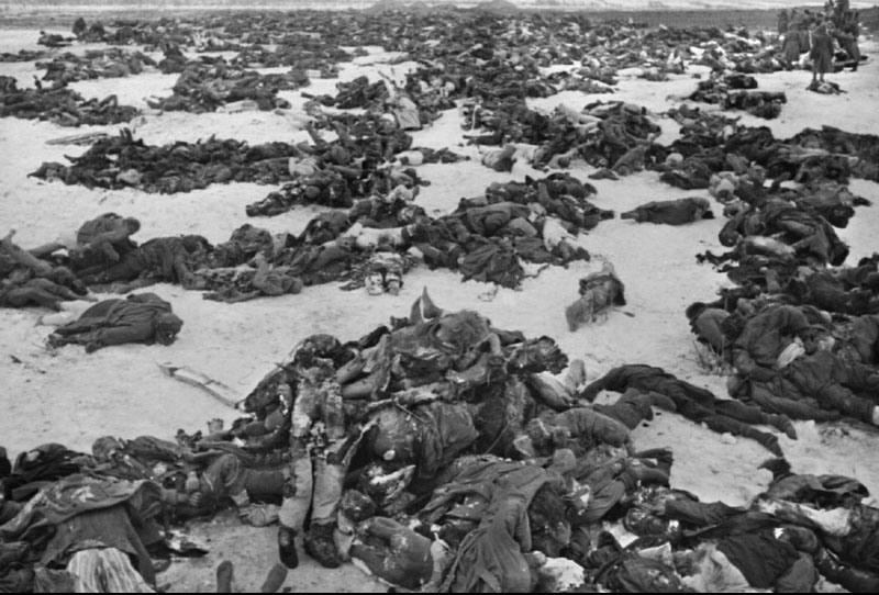 Картинки по запросу Сталинградская битва рабочие с винтовками