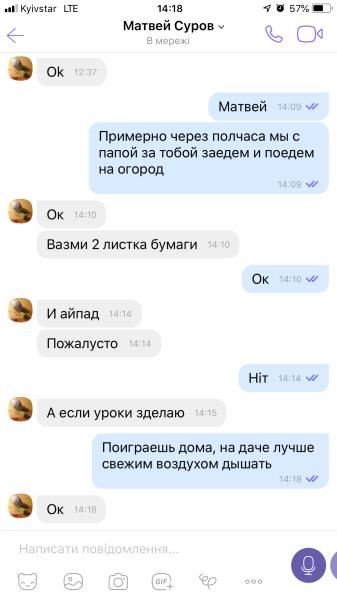 Один день переводчика из Бердянска