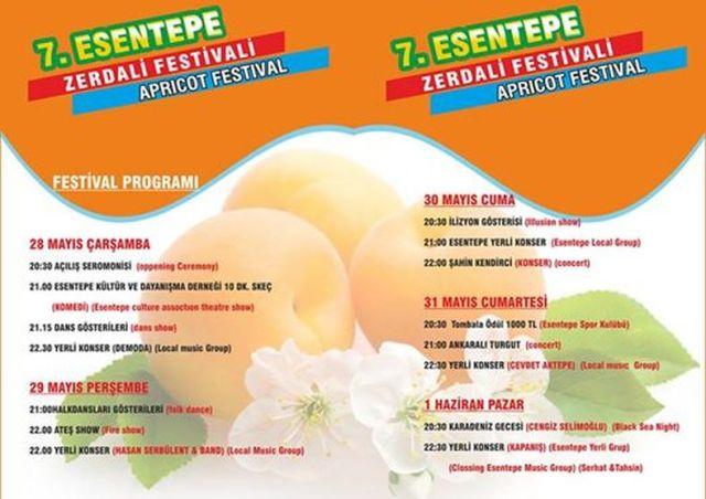 apricot-festival-program