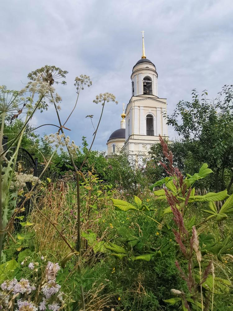 Церковь Преображения Господня в Радонеж