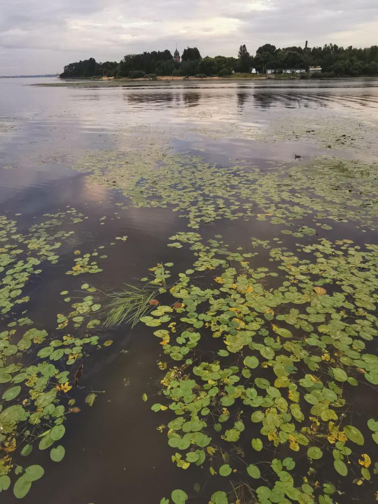 Вид на место слияния рек Которосль и Волги