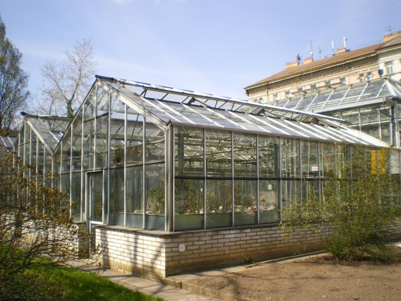 Ботанический сад Карлова университета