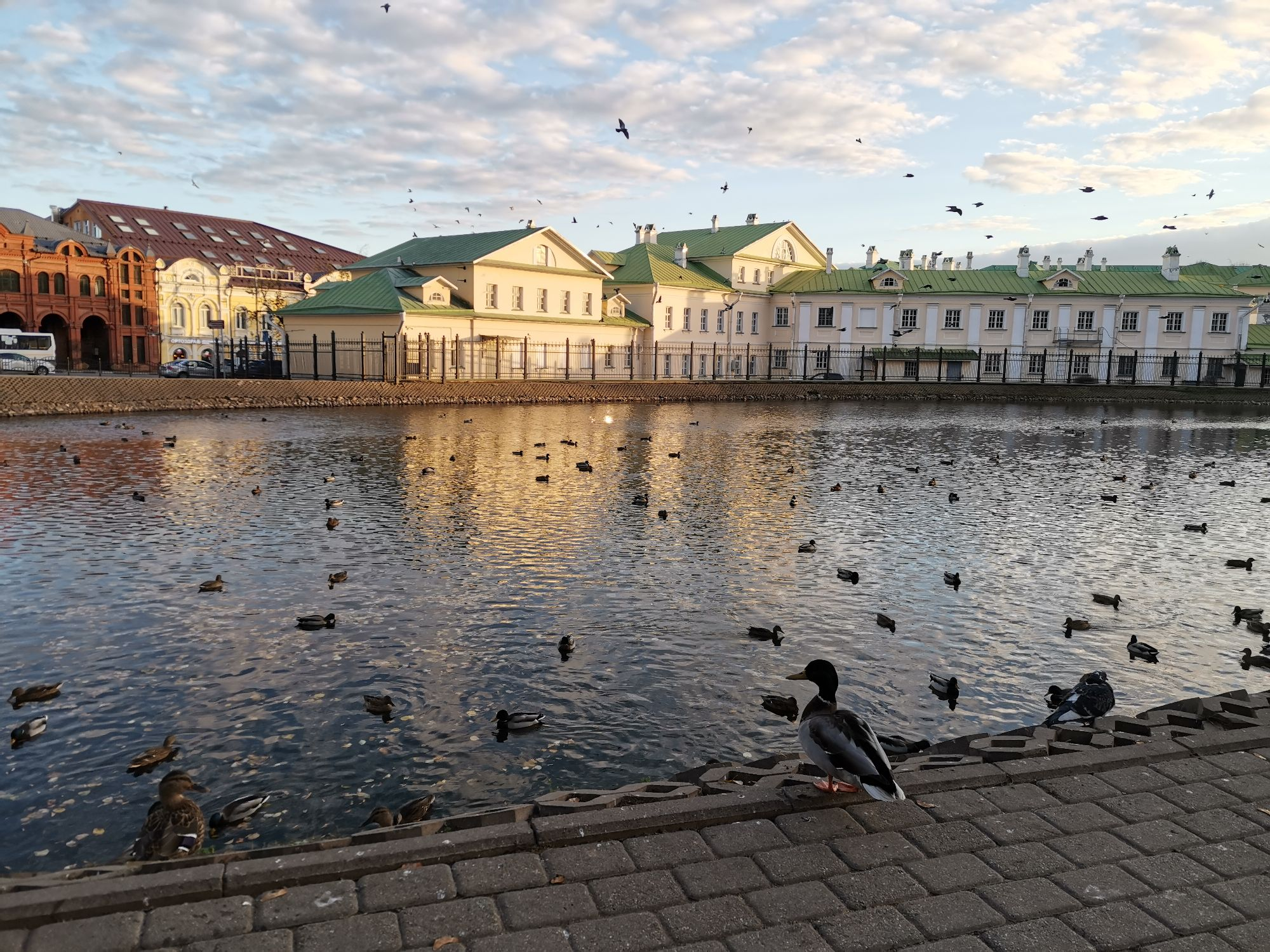 Белый пруд Сергиев-Посад