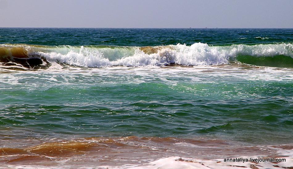 Мой муж попутал берега. Обнимался на курорте с какой-то доской!