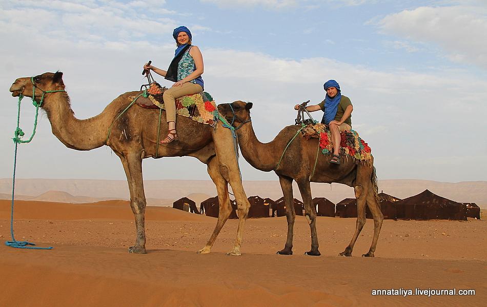 Поехали отдохнуть в Северную Африку. И вот чем всё закончилось!
