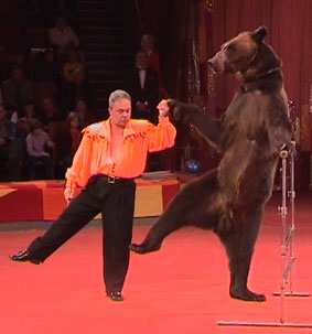0011-017-Medvedej