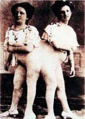 circus urodov