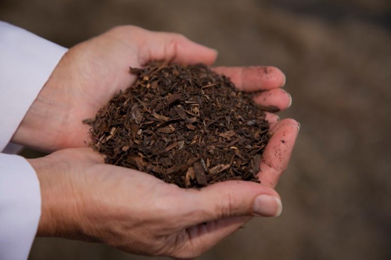 Готовый материал от человеческого компостирования. (Предоставлено Университетом штата Вашингтон)