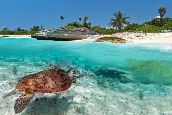 1344600862_Playa-Del-Carmen-Mexico