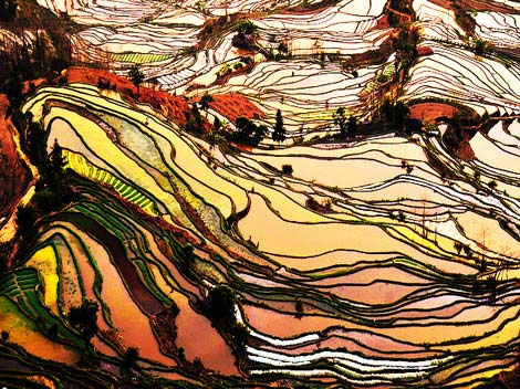 china's_seven_most_beautiful_rice_terraces2bc521b8135676a975e7