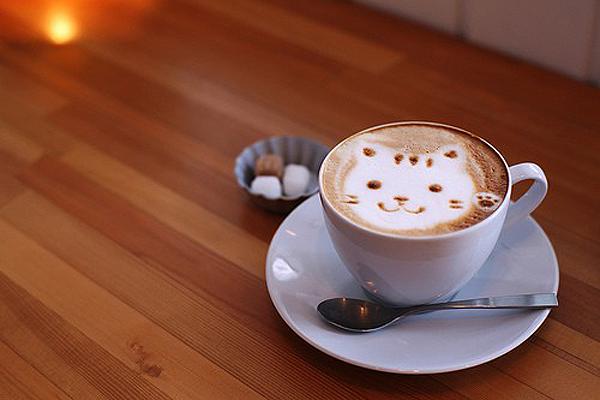 Cat-Coffee-Art-Caturday-9