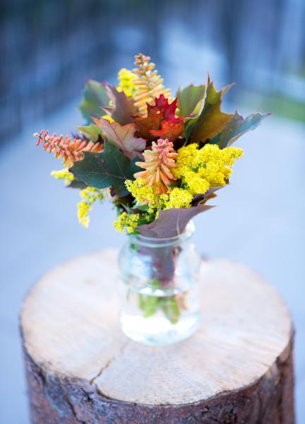 my-autumn-flowers