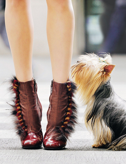 01-special-accessoires-oh-my-shoes-indispensables_0