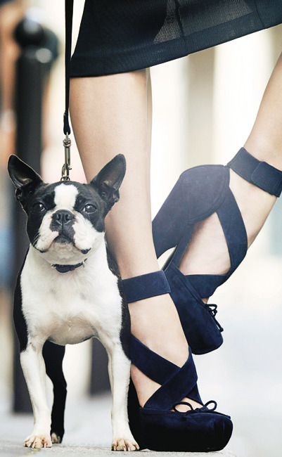 02-special-accessoires-oh-my-shoes-indispensables