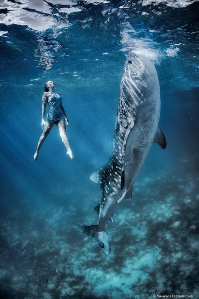 models-whales-photoshoot5