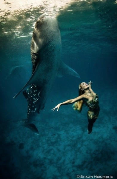 models-whales-photoshoot7