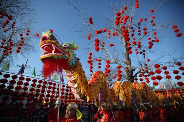 chinese-new-year-dragon-12312-14