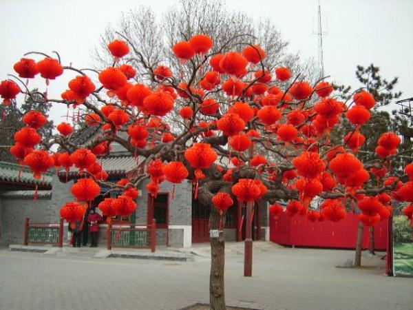 chinese-new-year-tree
