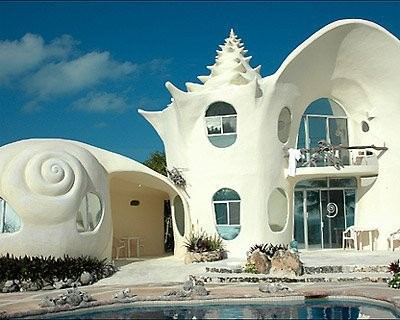 The Shell Home
