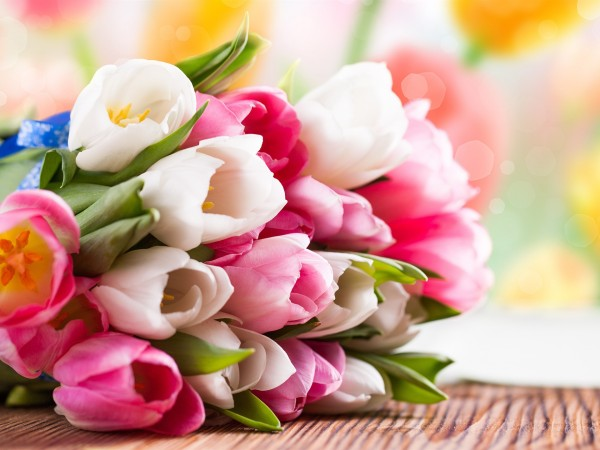 Pink-and-white-tulip-flower-bouquet_1920x1440