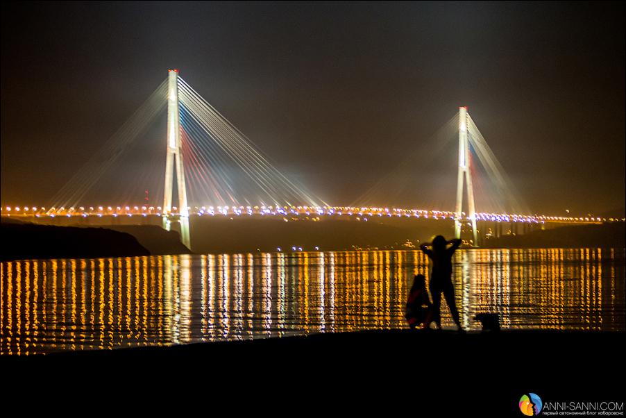 Ночь русский мост набережная двфу