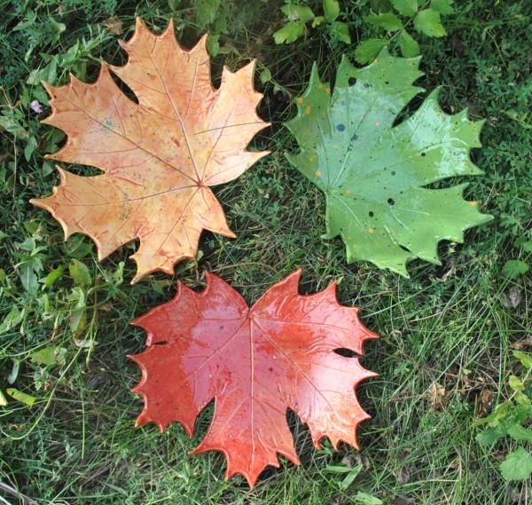 Тарелка из кленовых листьев