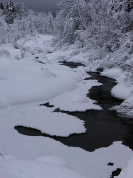 Norway 13