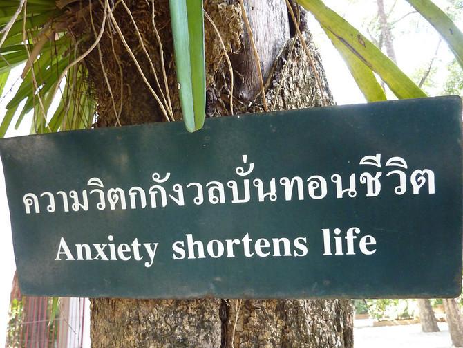 P1200488-anxiety-shortens-life-670x670