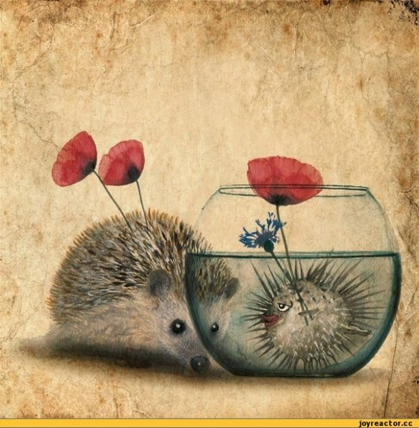 любовь-ежик-рыба-шар-art-285454