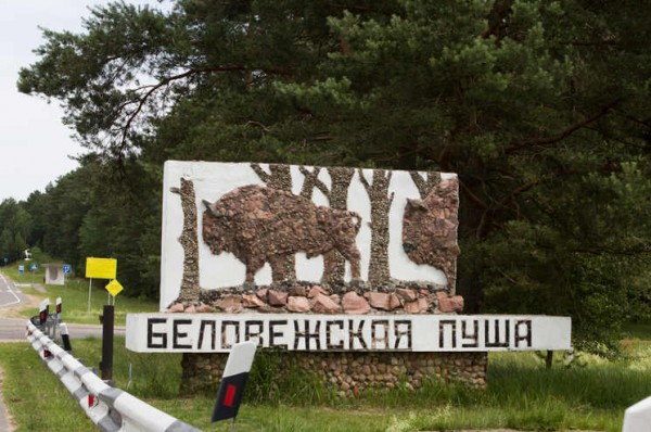 Стихи Людмилы Пакуленко