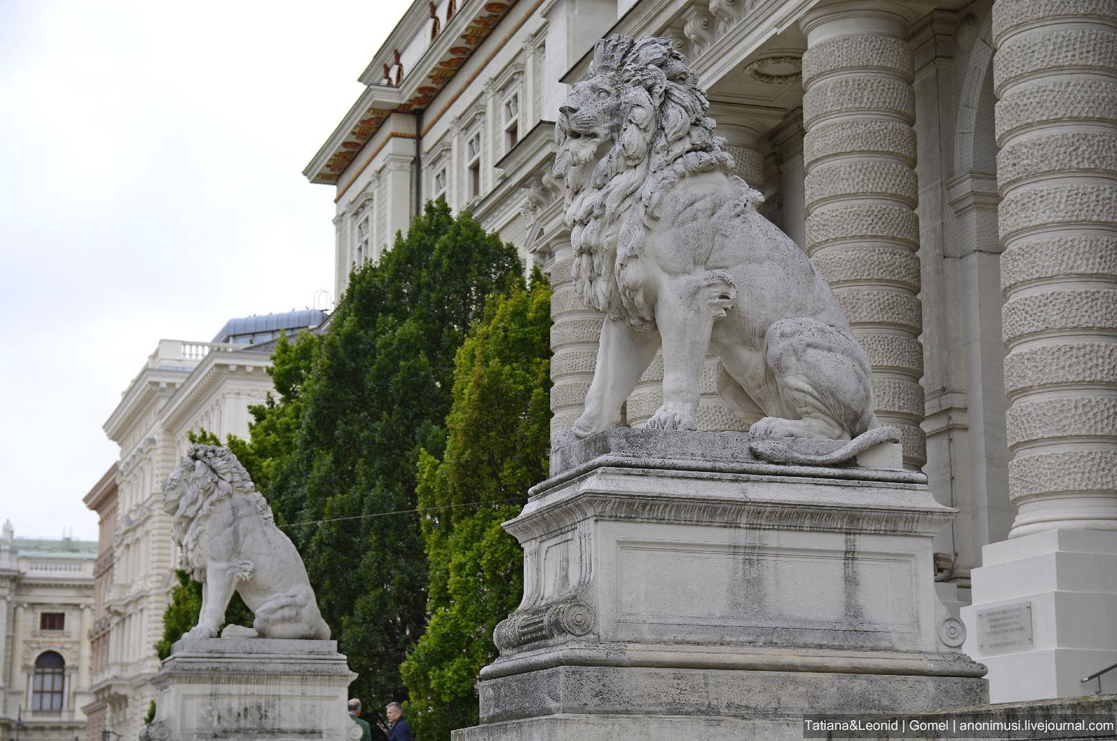 Архитектура Вены