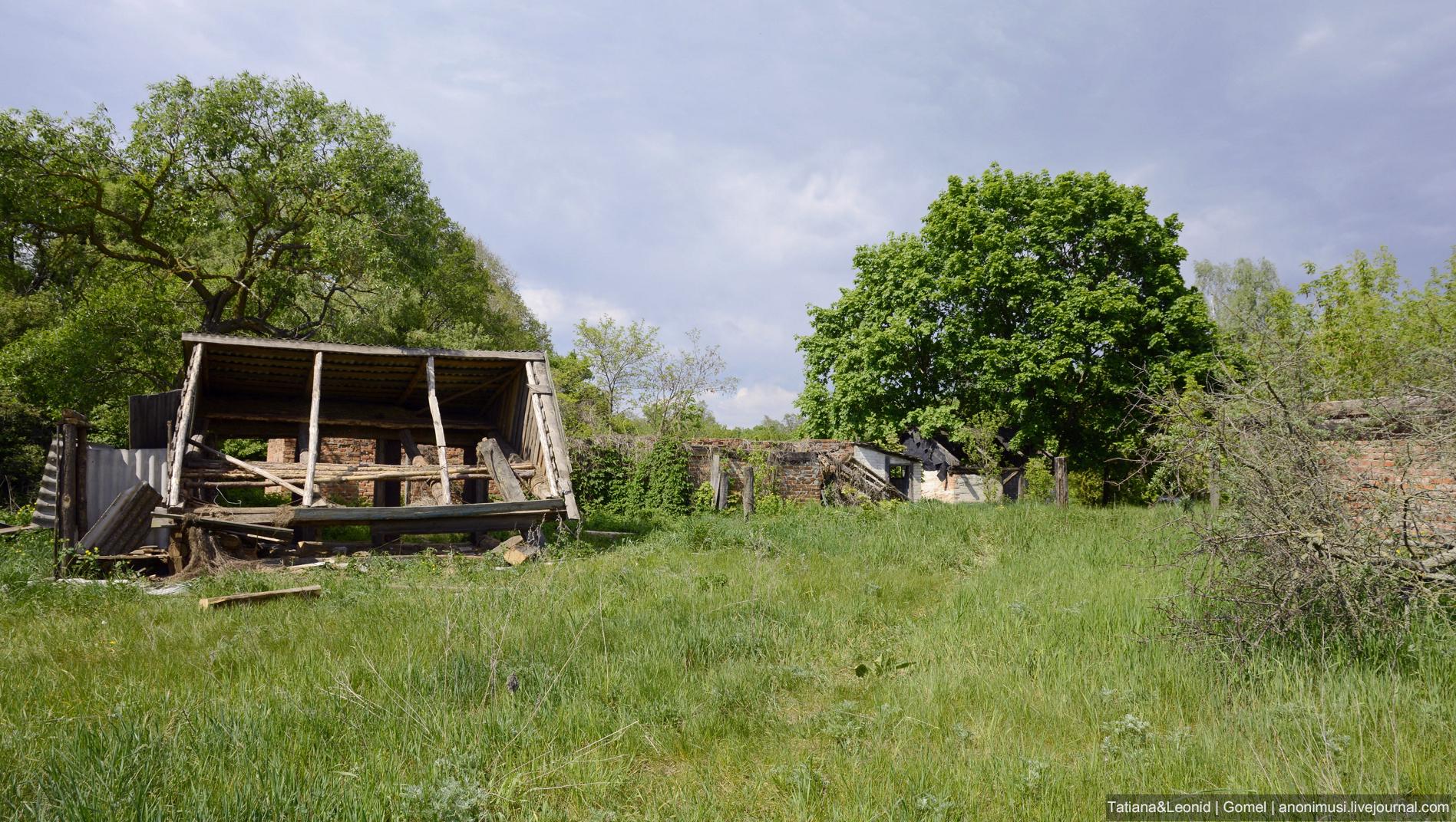 Чернобыльская зона свободного отселения