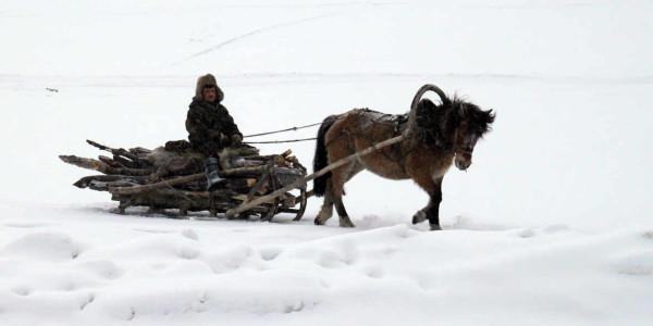 Снежный Салехард