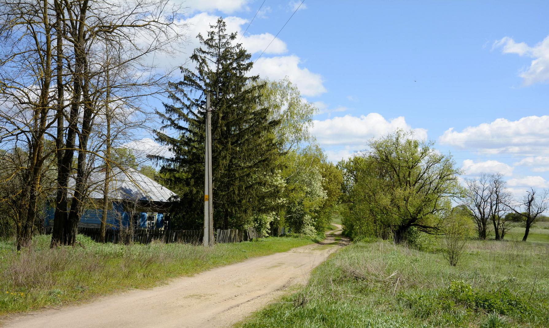 Деревня Кривча, Брагинский р-н