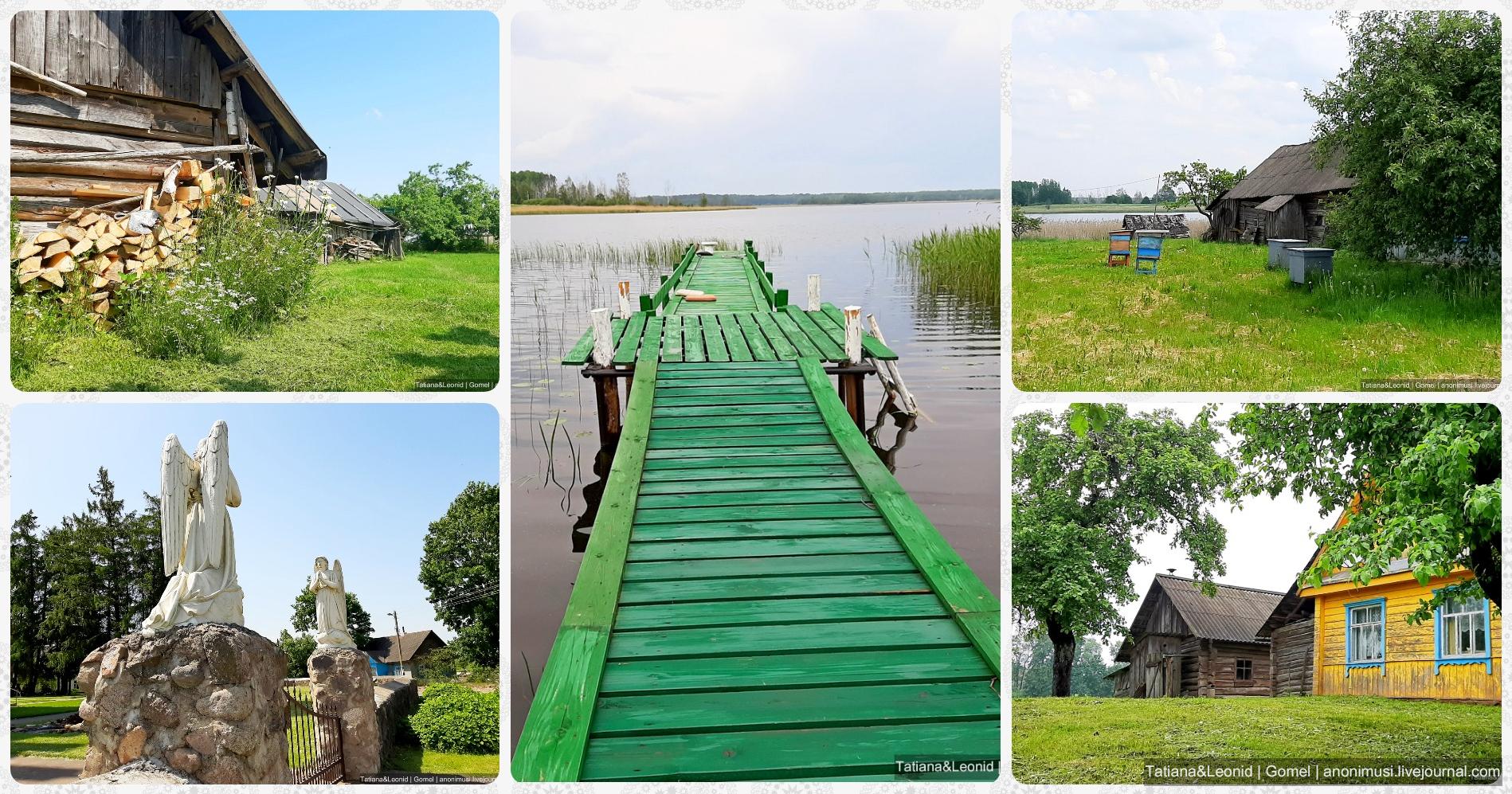 Витебщина. Беларусь
